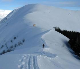 Monte Todano