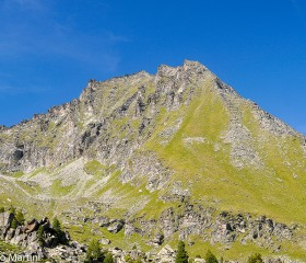 Mont Favret
