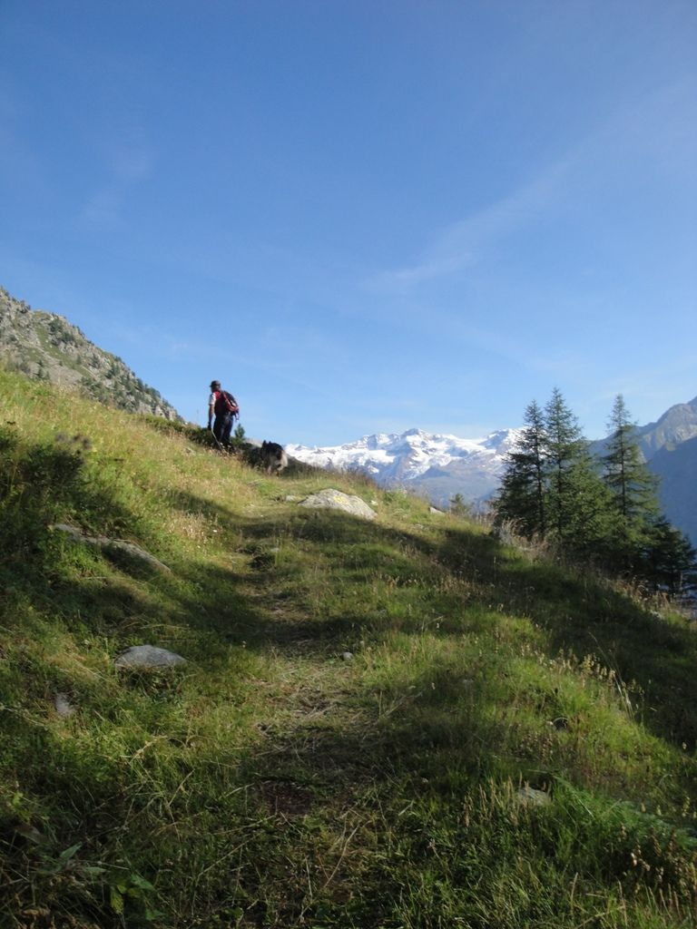 Sentiero Walser di Gressoney 11