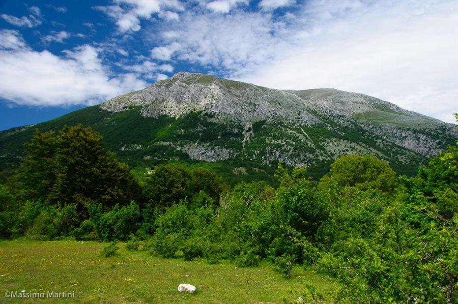 Monte Marsicano