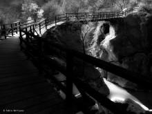 Ponte delle Capre © Fabio Bertuzzo