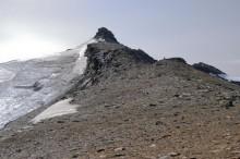 Punta Basei