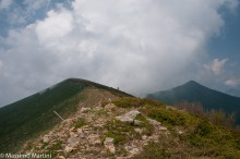 Punta di Cressa
